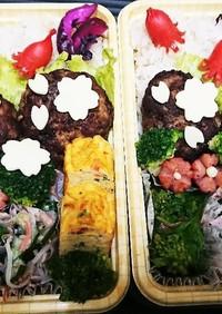 【夫婦弁当⑫】ハンバーグと菜の花のお浸し