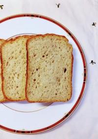 ライ麦粉入りHB天然酵母パン