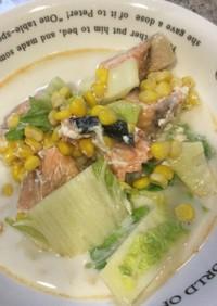 ポリ袋でつくる鮭と白菜のクリーム煮