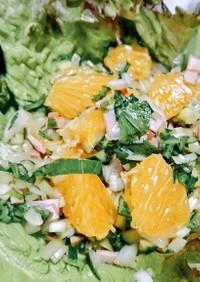 新玉葱を美味しく♡ハムと胡瓜の八朔サラダ