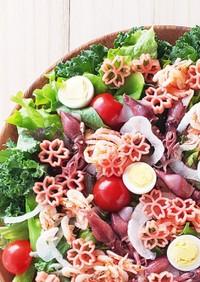 釜揚げ桜えびのピンク色サラダ
