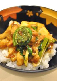 鶏肉と春野菜の山椒味噌丼