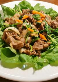 牛肉とルッコラのサラダ 発酵新玉葱