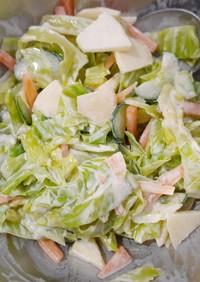 【テキトーに作る】給食風サラダ