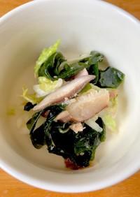 椎茸だし効いたワカメ、白菜、ツナの和え物