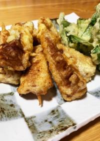 筍の辛子和え&天ぷら 1度に2度おいしい