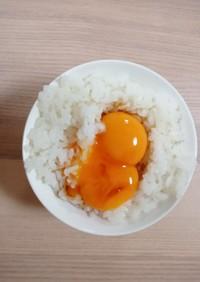 卵黄かけ御飯
