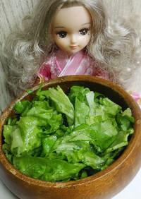 リカちゃん♡サラダ菜米油サラダ♪…˖*