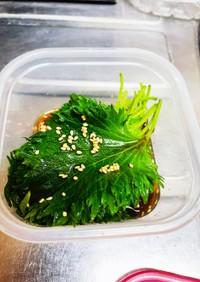 大葉 麺つゆ 漬け
