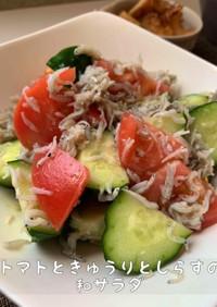 トマトときゅうりとしらすの和サラダ
