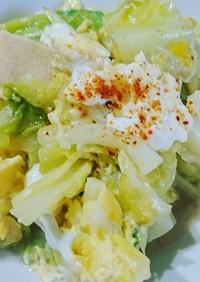 春キャベツと高野豆腐の卵とじ