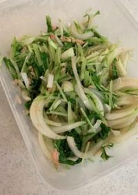 新玉ねぎの水菜ツナサラダ