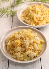 簡単!たっぷり葱の卵炒飯