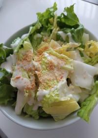 グリーンリーフと白菜のシーザーサラダ