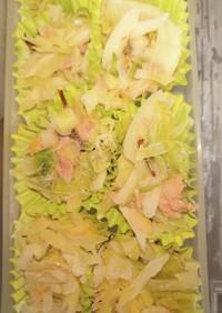 春キャベツと春玉ねぎのサラダ お弁当可
