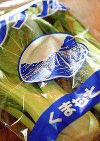 チンゲン菜の冷凍保存方法