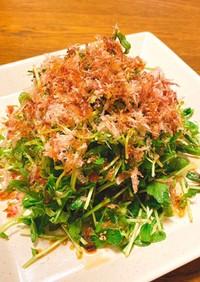 【時短】豆苗とクレソンの簡単サラダ