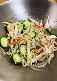 小鉢で一品♪ナムル風サラダ