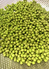 山椒の実  山椒 下処理 保存方法