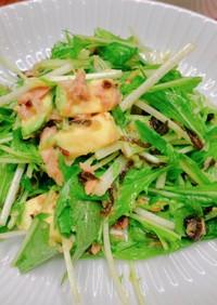 水菜塩昆布とアボカドシーチキンサラダ