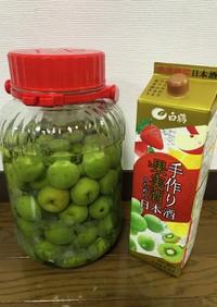 梅酒(日本酒)2021