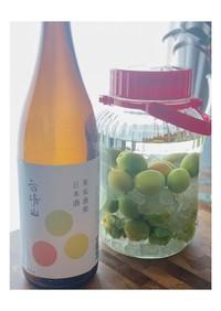 簡単♡日本酒で仕込む美味しい梅酒
