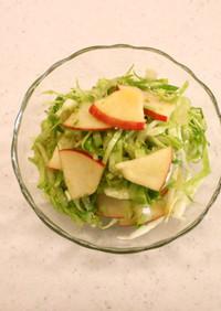 【使いきり】キャベツとリンゴのサラダ