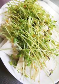 【時短で超簡単】豆苗のせ豆腐サラダ