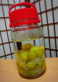 梅酒の作り方(かんたん)