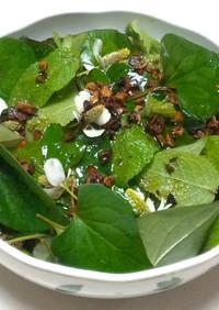 ドクダミとミントの薬草サラダ