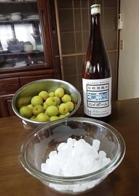 笹祝酒蔵公式!日本酒で作るおいしい梅酒