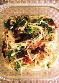 もやしとキクラゲの香草炒め+オマケ副菜