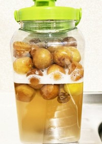 発酵した 梅シロップの報告