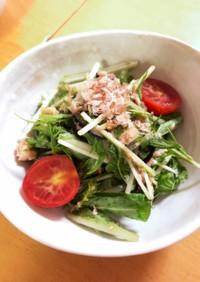 簡単《水菜とツナの和風サラダ》