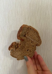 糖質オフ HB食パン(写真は冷凍状態!)
