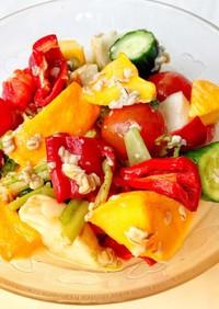 夏野菜の塩麹サラダ