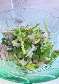 パクチーとシラスのタイ風サラダ