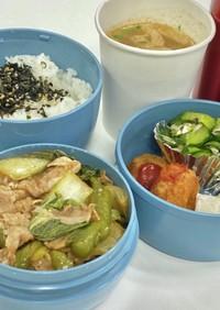 麺つゆ+ソースの炒め物 タロの弁当134