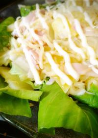 野菜たっぷり簡単レンチンサラダ!