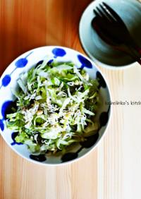 しし唐とシラスのレタスサラダ