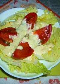 トマト&白菜のにんにくマヨわさびのサラダ