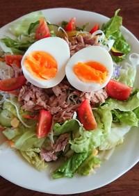 ツナと卵のサラダうどん