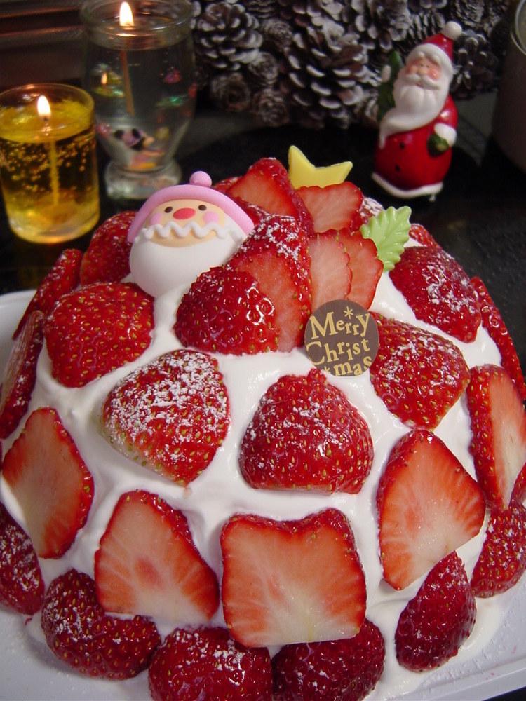 クリスマスケーキ苺ズコット(インスタ映え
