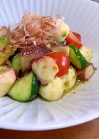 タコとアボカドの柚子胡椒サラダ