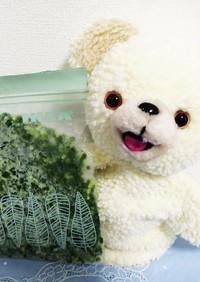 小ねぎ万能ねぎの冷凍保存