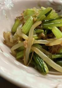 小松菜ともやしとひき肉炒め
