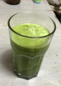 スムージー初心者による葉緑体ジュース