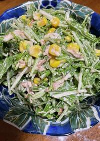 【超簡単】水菜とツナのサラダ