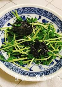 豆苗と海苔のサラダ