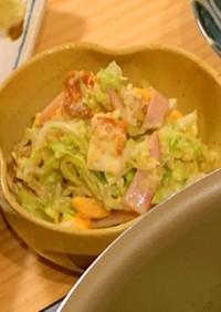 キャベツと目玉焼きのごまマヨサラダ